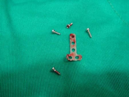 小兽医的叮咛: 小动物的前肢(包含上,下前肢和掌骨)由於没有厚实的