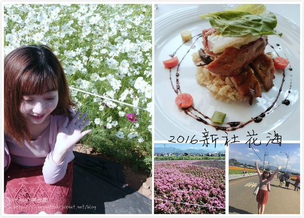 ♥生活♥2016新社花海 x 千樺花園簡單遊(食)記分享