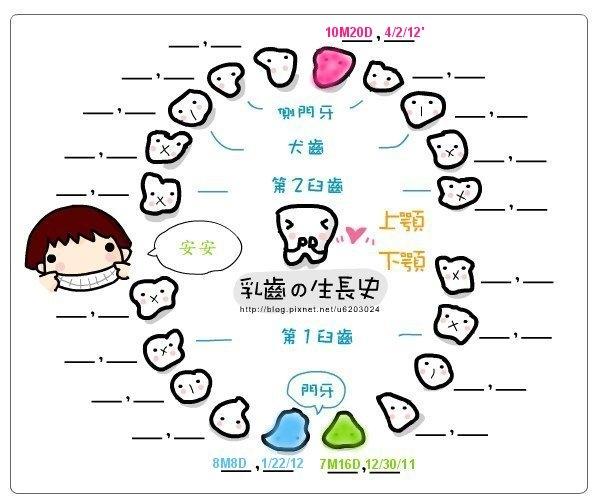 [10M20D] 2012/04/02 安安的第三顆牙