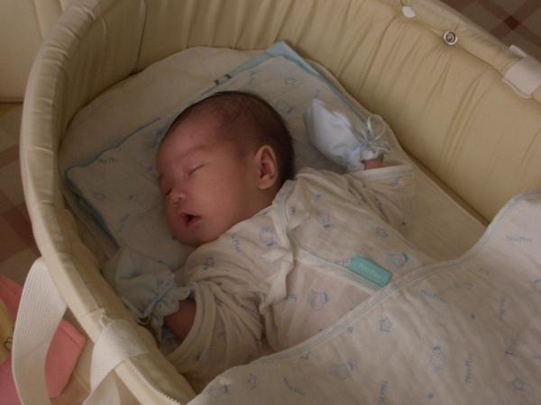 [2M] 小紅豆滿兩個月了~ 睡覺時的小紅豆也是很可愛的