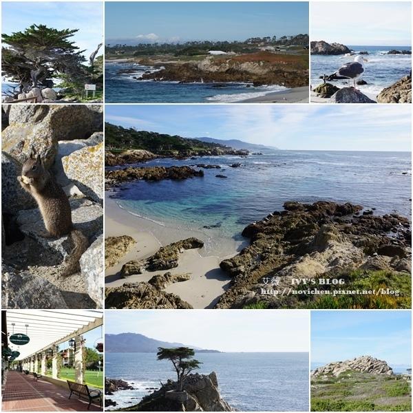 ▌美國加州 ▌【Monterey景點】北加州最美海岸線 ♥ 17-Mile Drive 17哩路 ♥ (內含17-Mile Drive景點地圖)