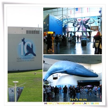 [8M3W] Aquarium入口.jpg