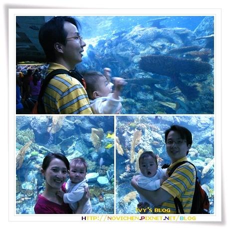 [8M3W] Aquarium_2.jpg