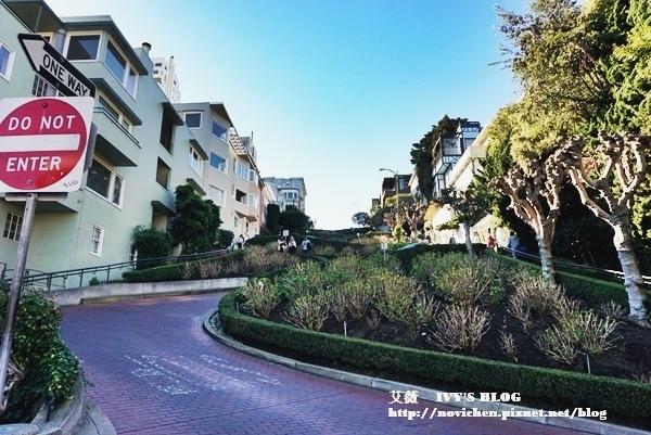 ▌美國加州 ▌【舊金山景點】舊金山地標之一,世界上最彎曲街道 ♥ Lombard Street 九曲花街 ♥