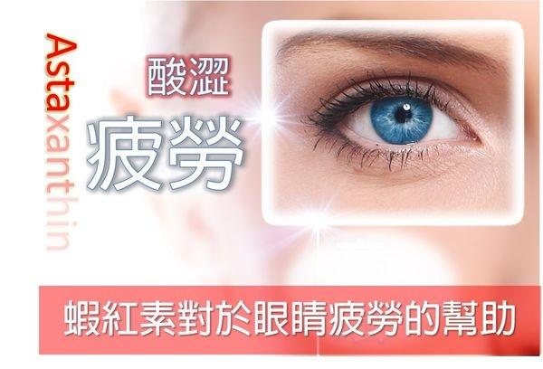 眼睛酸澀新救兵:蝦紅素(藻紅素)
