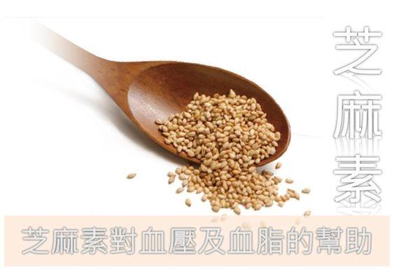 小芝麻,大功用:芝麻素對血壓及血脂的幫助