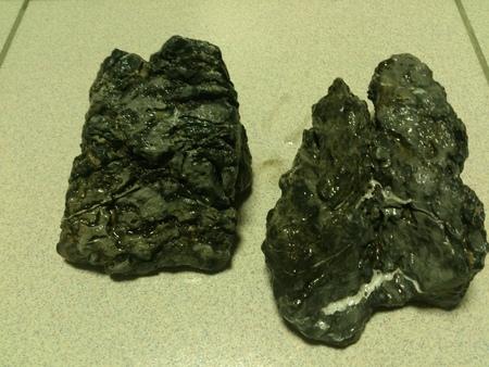 硬景缸 - 石頭影響GH KH?