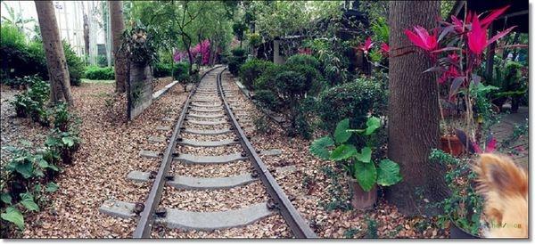 [遊記]彰化田中/鐵道上也可以喝咖啡!? 復古建築+翠綠樹林+懷舊鐵道 = 石頭魚鐵道庭園咖啡 (可帶寵物入園)