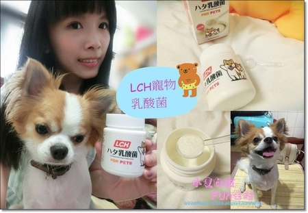【心得】LCH寵物專用乳酸菌,一罐抵多罐~讓毛孩擁有清新好口氣還可以保持消化道、皮膚健康,豆豆頭好壯壯就靠它!(內有影片)