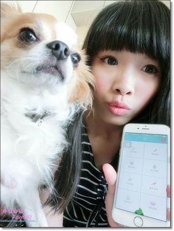 [APP分享]專為寵物量身打造超實用APP-寵物生活圈,使用智慧APP把寵物圈進質感生活