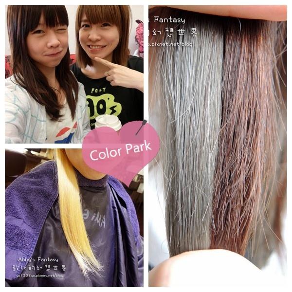 美髮 / 西門ColorPark 漂髮玩色初體驗 我的小叛逆 霧面灰綠髮色 低調有質感 ❤