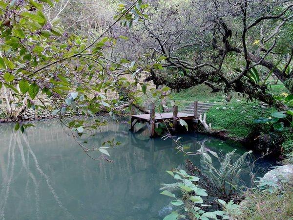 【愛玩耍】<苗栗三義>山那邊.綠葉方舟