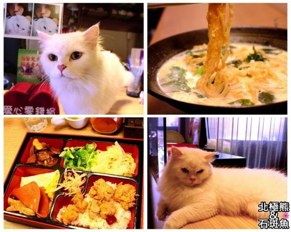 <素食餐廳>星空.cat-專賣素食的超隱密貓咪餐廳,小肉球店長融化你我的心