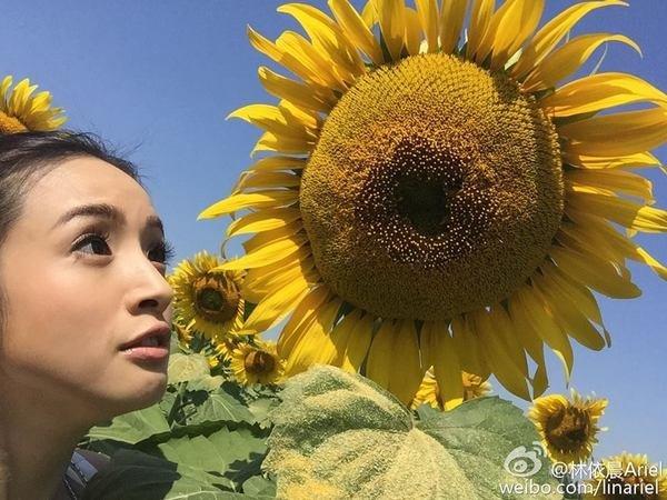 臉書 Ariel Lin林依晨 4.jpg