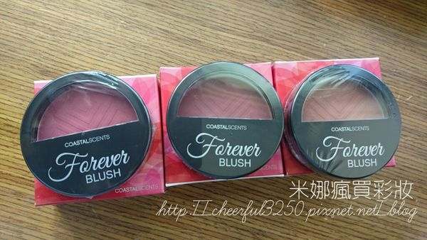 【開箱】Coastal Scents Forever Blush腮紅