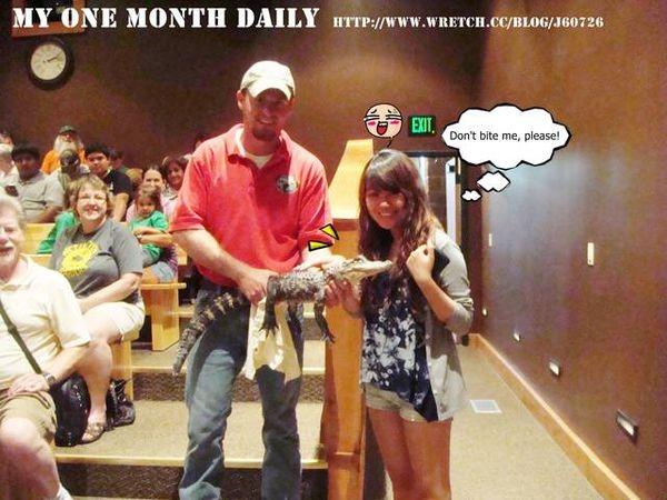 【一個月小遊學森聯絡簿】Alligator♥一起和我親吻短吻鱷