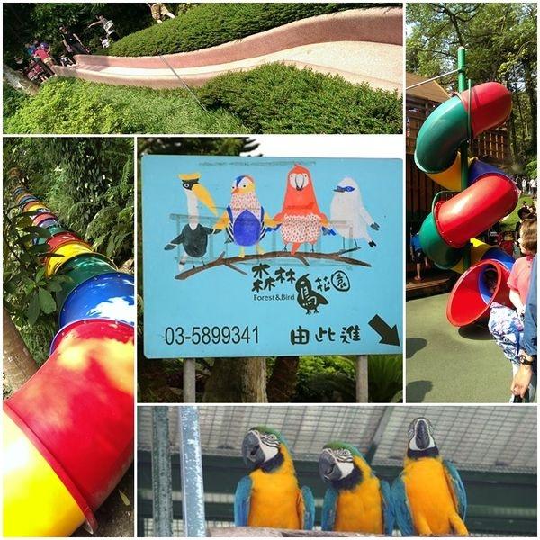 【新竹。新埔鎮】● 親子玩樂 ● 森林鳥花園● 超長的彩虹溜滑梯! 還可以進鳥籠賞鳥! 一個屬於孩子的森林遊樂園!