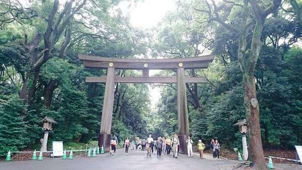 【東京】明治神宮:近竹下通,東京必訪,散步參拜去