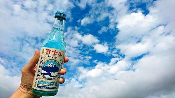 【河口湖景點推薦】自然生活館&大石公園:賞花、眺望富士山的好地點