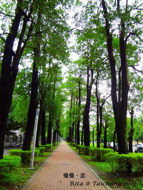 【台中南區】中興大學:悠閒自在,漫步中興湖