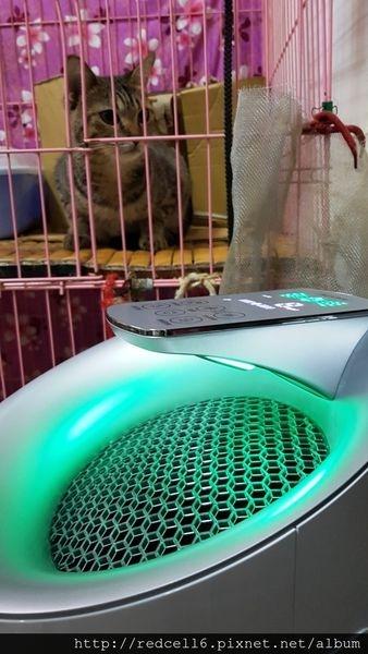韓國原裝進口LG PuriCare空氣清淨機PS-W309WI (超淨化大白)淨化體驗心得分享