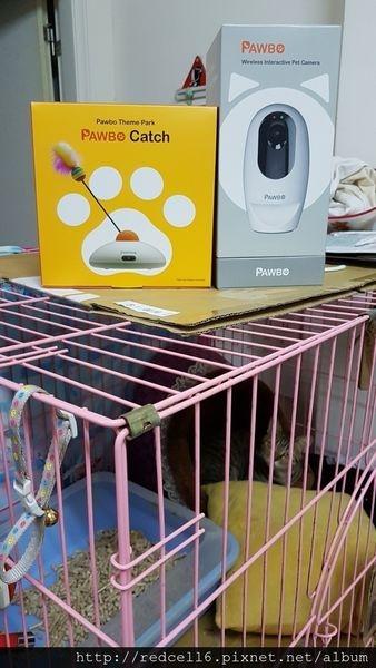 守護毛孩子好朋友Pawbo+三合一遠距互動寵物攝影機&Pawbo Catch寵物轉轉樂好樂趣!