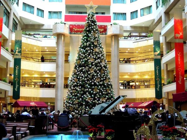 鴨子の台北慢活之行~捷運大安森林公園站+福華大飯店超大聖誕樹+cama娃娃遇上黃色小鸭^0^大家快來看喔!!