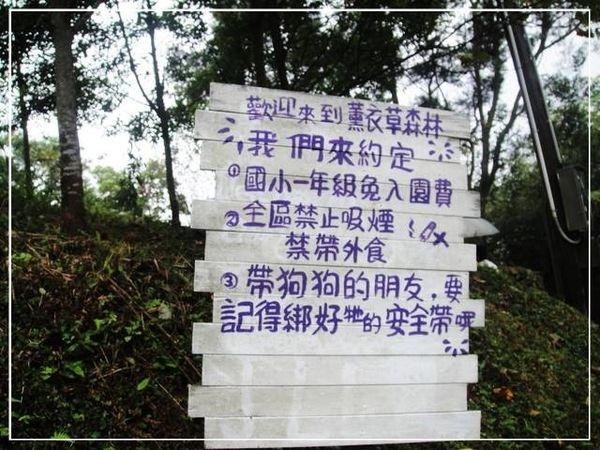 (新竹)薰衣草森林~尖石山林中的秘密花園