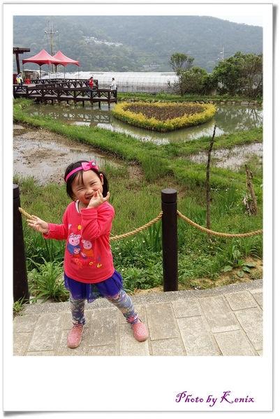 踏青去~台北市內的美景~內湖白石湖吊橋