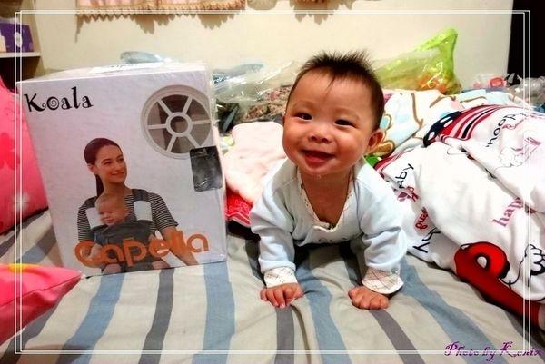 新體驗~【capella】無尾熊坐墊式揹巾/嬰兒背帶,省力透氣,輕鬆帶著寶寶到處玩!