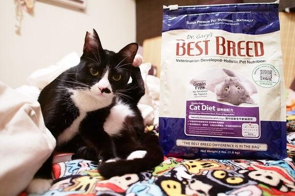 貝斯比Bestbreed 貓無穀配方