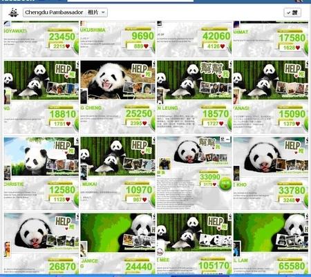「2012年Panda Quest成都熊貓守護使」台灣選手入圍準決賽,一起幫台灣加油壓!!!!