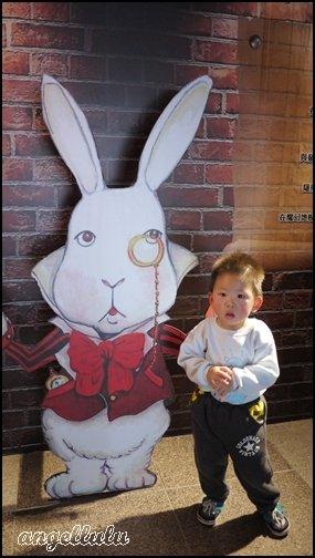 (展覽)台中科博館●讓大家動起來的愛麗絲的奇幻冒險特展,很好玩,但整體故事性有點薄弱~ @ angellulu 愛分享 :: 痞客邦 PIXNET ::