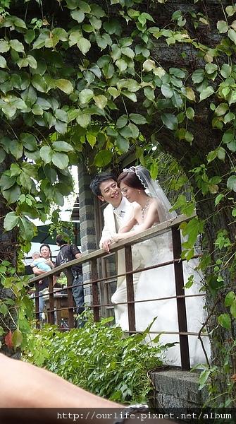 25 July 2010-三義.非常鳥的綠葉方舟景觀餐廳(前言)