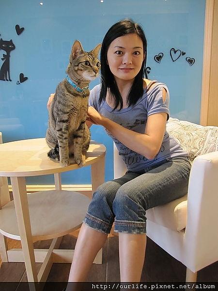 台中.與貓共舞下午茶時光@貓.旅行咖啡輕食館(+wifi)