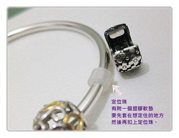 CIMG6995.JPG