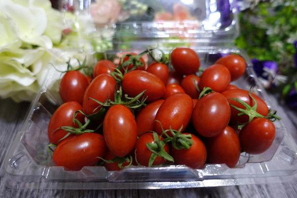 志佳園有機番茄 (12).JPG
