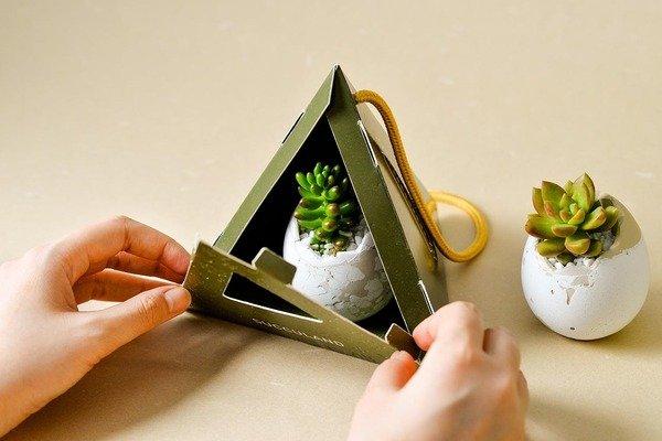 2021 有肉的端午節植物係禮盒_台灣設計製造7.jpg