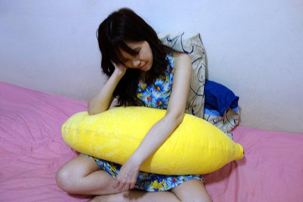 Nevermite雷伏蟎防蟎抱枕 (13).JPG