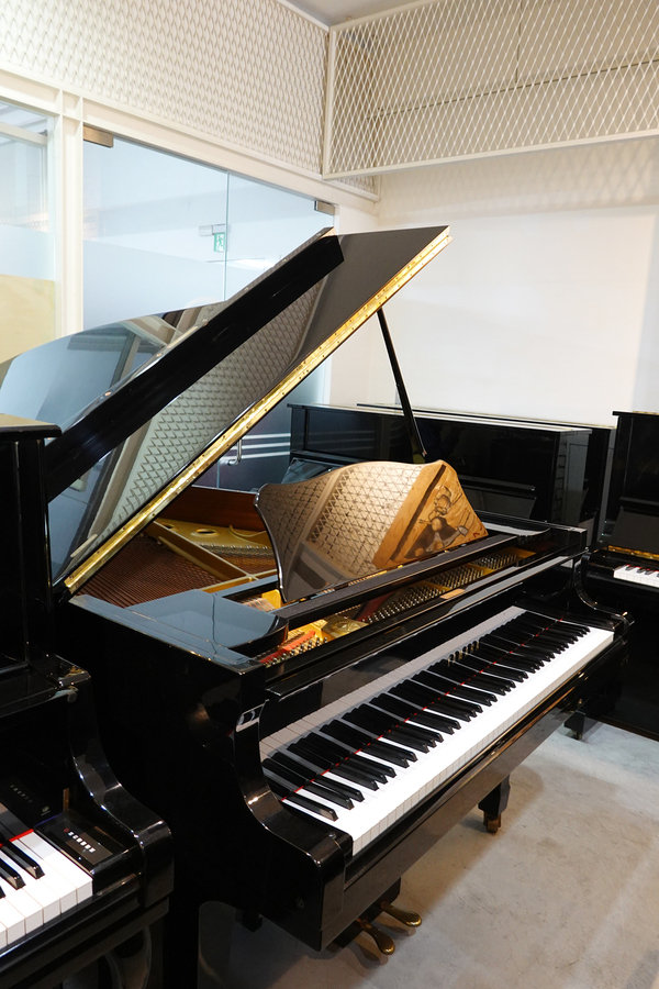 琴藝樂器-鋼琴岀租台北,台北租鋼琴費用,中古鋼琴收購 (28).jpg