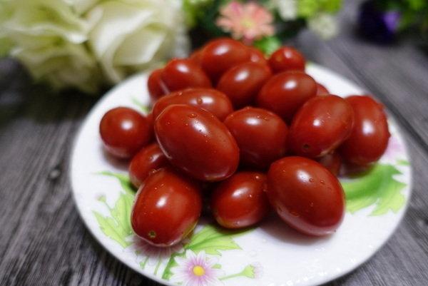 志佳園有機番茄 (13).JPG