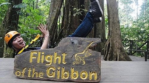 (旅遊~泰國 清邁) Flight of the Gibbon ~ 體驗長臂猿在森林滑翔快感