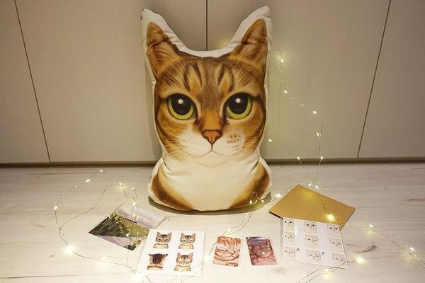 貓物║20歲成人禮 咪咪大頭喵 - 訂製手繪抱枕