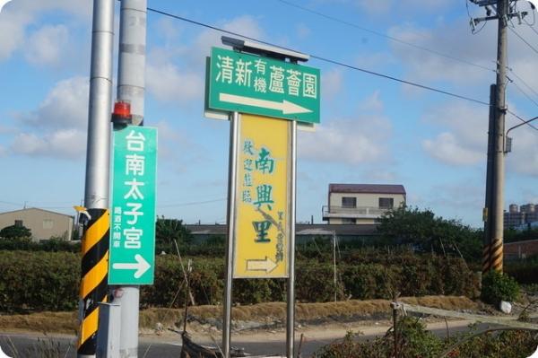 【南部景點】2015.3.30 蘆薈花