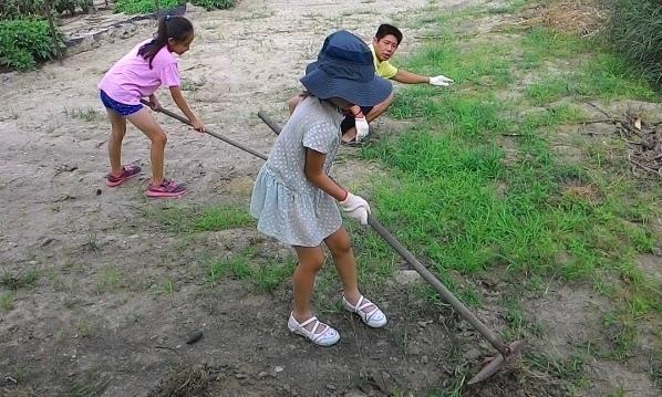【經驗分享】6、7月,申請轉作、休耕辦理,土地翻耕,綠色肥料,