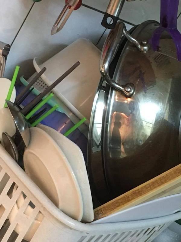 原裝進口  不傷手 去油 去垢 柳燕 代言  SPARTAN 斯巴達 高濃縮 家事 幫手 廚房器皿 洗潔 精 洗碗精 Chialo