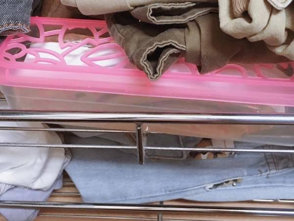 女人知己 試用 義大利 原裝進口 瑞士 製造 ORPHEA 歐菲雅  衣物 保護品 掛片式 樟腦丸 替代品 掛耳式 經典花香  阿爾卑斯山 花草 精華 提鍊製成 除霉味 蛀蟲 衣魚 書蝨 CHIALO