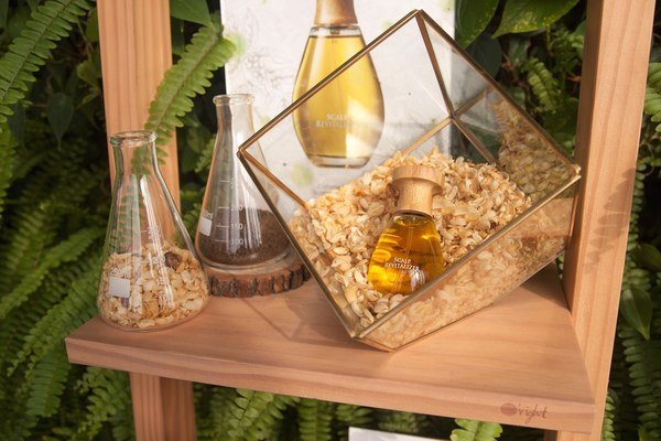 歐萊德「咖啡因養髮液」限時72小時驚喜回饋,採用台灣原生咖啡殼天然植萃,五度榮獲美妝大獎.jpg