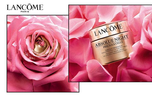 LANCÔME 絕對完美雙玫瑰修護晚霜 主視覺.jpg