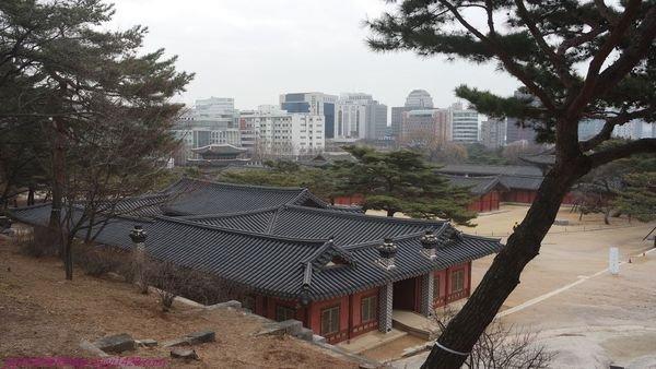昌慶宮--1.jpg